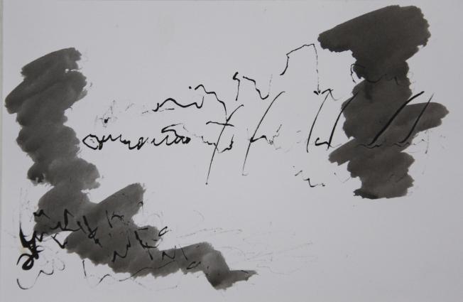 tekening Oost-Indische inkt Frankrijk 2009
